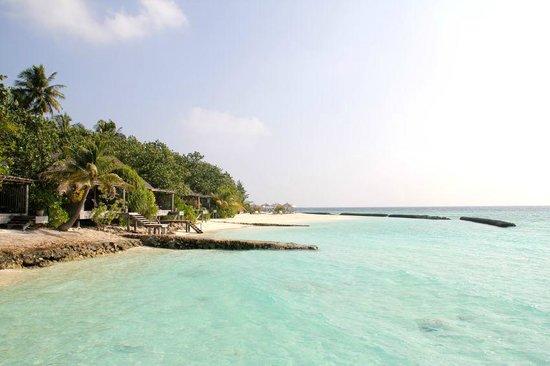 Gangehi Island Resort: Gangehi 13