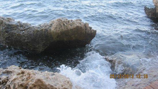 Dreams Vacation Resort : Море.