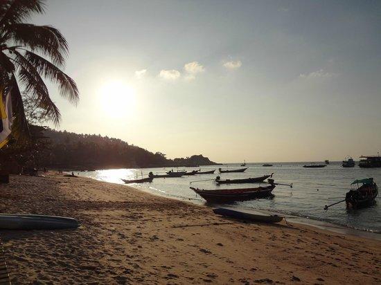 Captain Nemo Guesthouse: coucher de soleil plage de Mae Haad