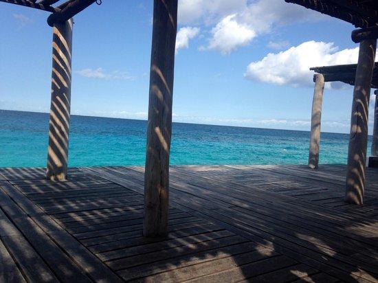 Hotel B Cozumel: Morning yoga happens here! Stunning.