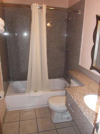 Super 8 San Antonio/I-35 North: Salle de bain de la chambre 117 au 22 janvier 2014.