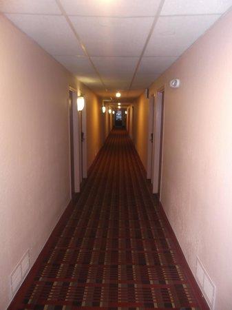Super 8 San Antonio/I-35 North: Corridor au 23 janvier 2014.