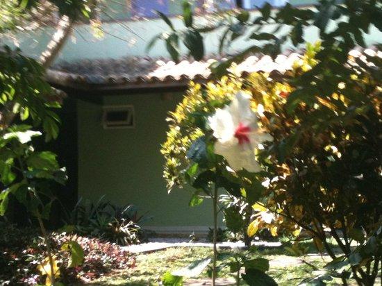 Pousada Aguas Claras Buzios: Jardim florido