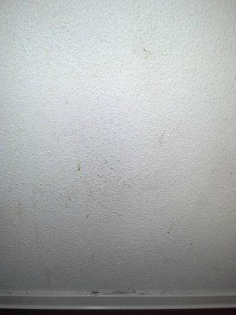 hotelF1 Besancon Valentin- Espace Valentin centre: mur donnant en face du lit