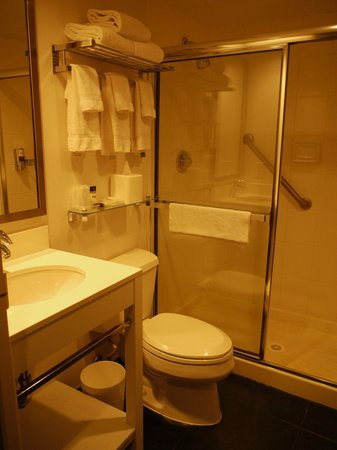 Four Points by Sheraton Manhattan Chelsea: Salle de bain