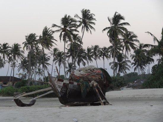 Coconut Grove: Лесок, отделяющий отель от моря