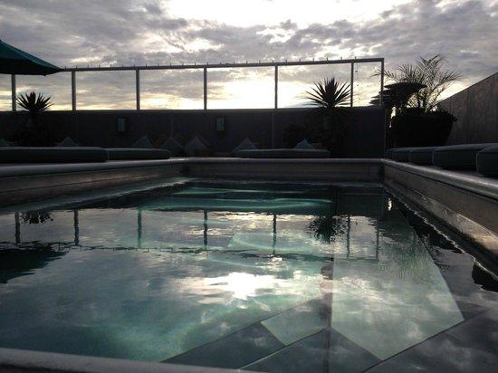 شايد هوتل: Pool on the Roof
