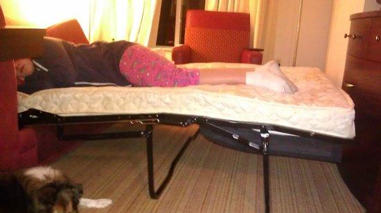 Residence Inn Glenwood Springs: worst sofa sleeper ever