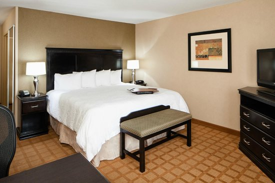 Hampton Inn & Suites Chicago-Saint Charles: King Standard Room