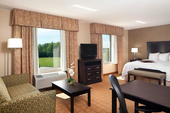 Hampton Inn & Suites Chicago-Saint Charles: King Studio Suite