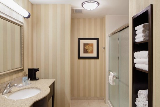 Hampton Inn & Suites Chicago-Saint Charles: King Standard Bathroom