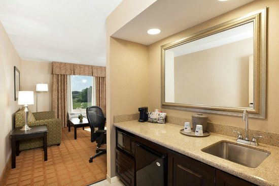 Hampton Inn & Suites Chicago-Saint Charles: Studio Suite Wetbar