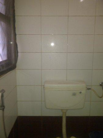 Hotel Durga Residency: bathroom