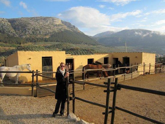 Cortijo Los Lobos: The stables