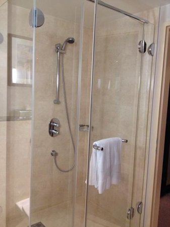 InterContinental Hotel Warsaw: Large shower cubicle