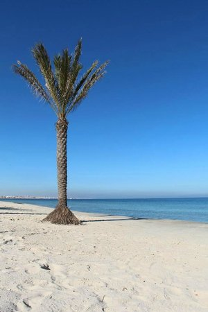 Houda Golf and Beach Club: пляж