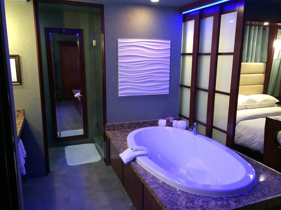 Shade Hotel : Jetted Spa