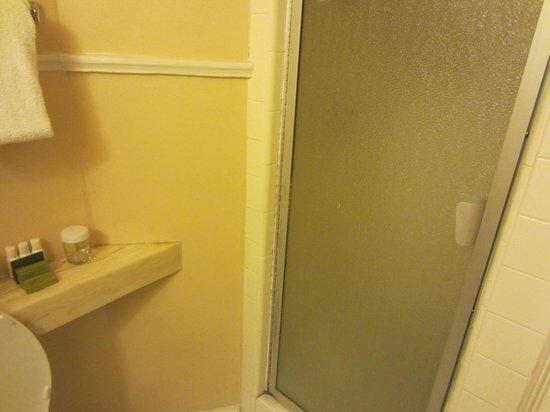 Arlington Resort Hotel & Spa: Shower