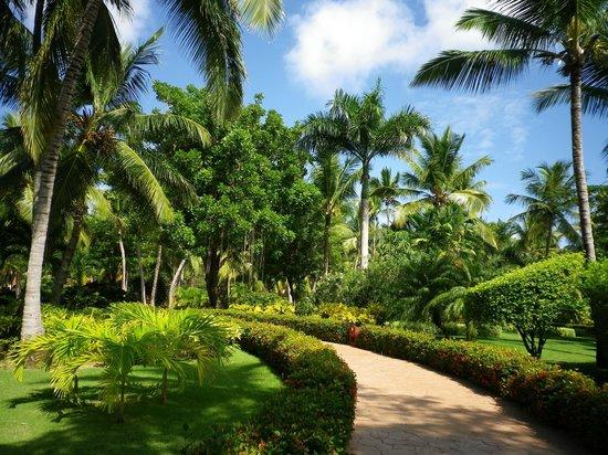 Iberostar Punta Cana : villégiature sur le site