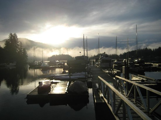 Pender Harbour Resort & Marina: sunrise from my window