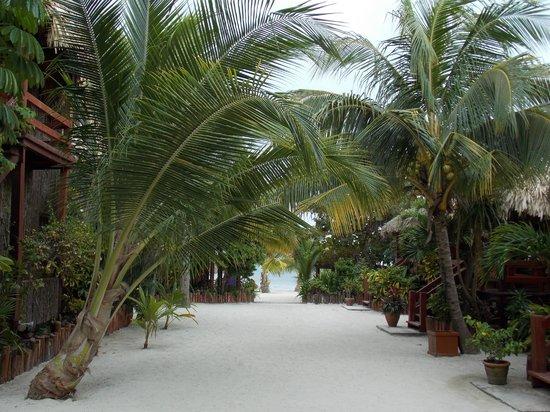 Ramon's Village Resort : Corredores