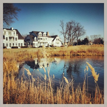 Inn at Perry Cabin by Belmond : Shoreline of Property