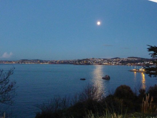 The Imperial Hotel: Early moonlight over the Bay.