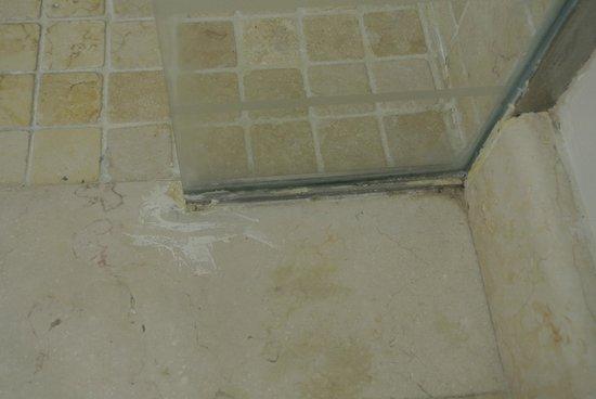 Iberostar Grand Hotel Bavaro: Messy shower glass