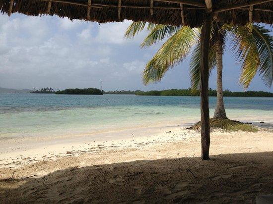 Yandup Island Lodge: View from beach on Yandup