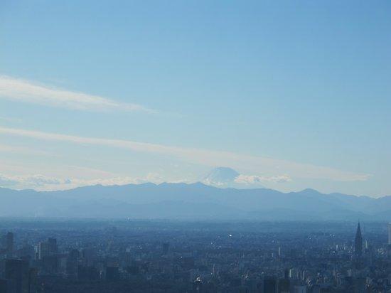 Tokyo Skytree: 富士山が見えました。