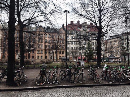 Hotel Rival : Jardines delante del hotel en MariaTorger