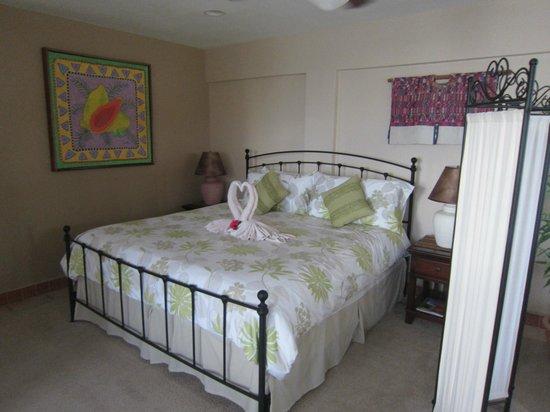 Iguana Reef Inn: Hotel room