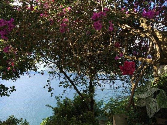 Zandoli Inn: View