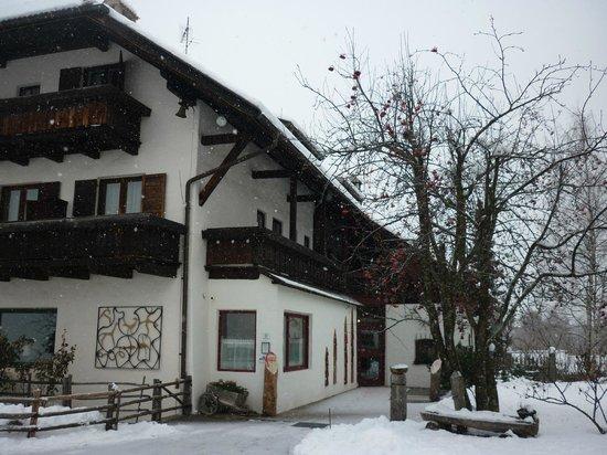 Hotel Naturidylle Geyrerhof: Hotel 3