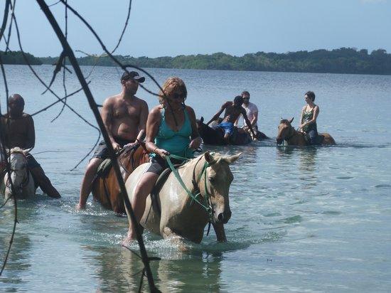 Rhodes Beach Resort Negril: Horseback riding
