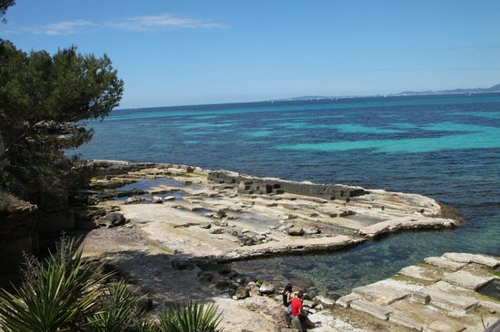Hotel Palma Mazas: another view from wild side ( one mile walk )
