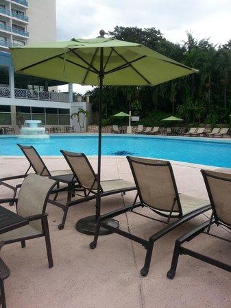The Jamaica Pegasus Hotel: Pool
