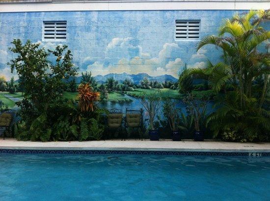 Rose Lane Villas: Pool Mural