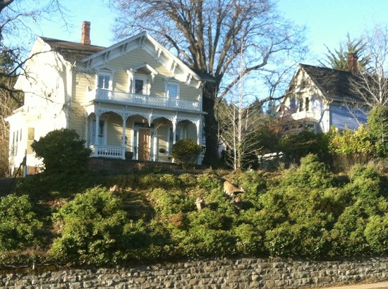 Bard's Inn: The view from the breakfast room with deer.