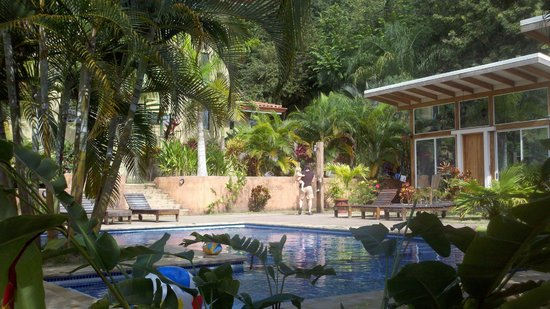 Fuego Lodge : View across the pool toward the poolside accommodations