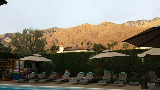 Desert Riviera Hotel : Morning view from our poolside room