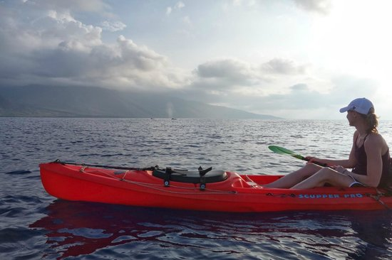 Hawaiian Paddle Sports: Kayaking with the whales!