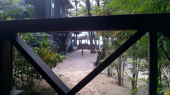 Bananarama Beach and Dive Resort : view from room 15