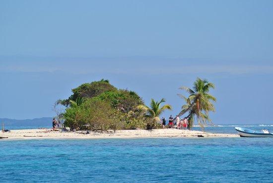Bay Islands Adventures : Pidgeon Key barbecue