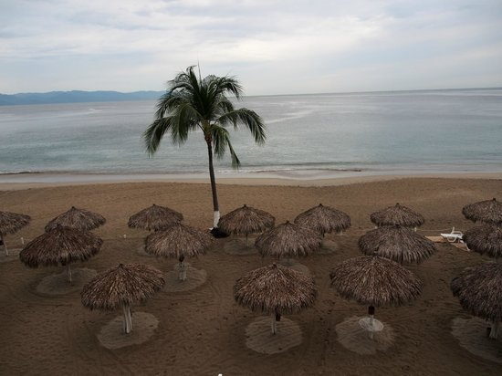 Vallarta Torre: Beachfront view
