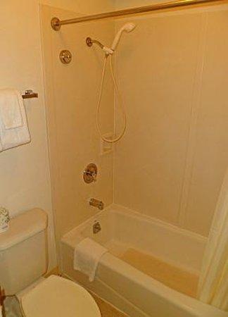 Alohilani Resort Waikiki Beach: Modest bathroom