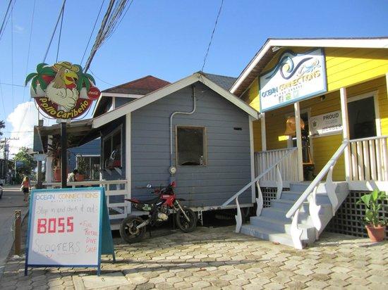 Roatan Backpackers' Hostel: ocean connection ,diving center