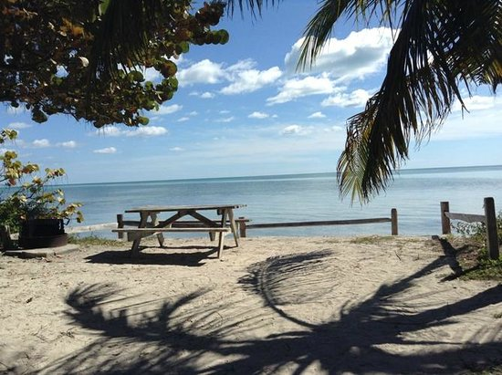 Florida Keys, FL: Site # 4.  This site is a 2-person and had a big palm tree for shade