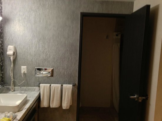 Holiday Inn Express & Suites Queretaro: Entrada Baño