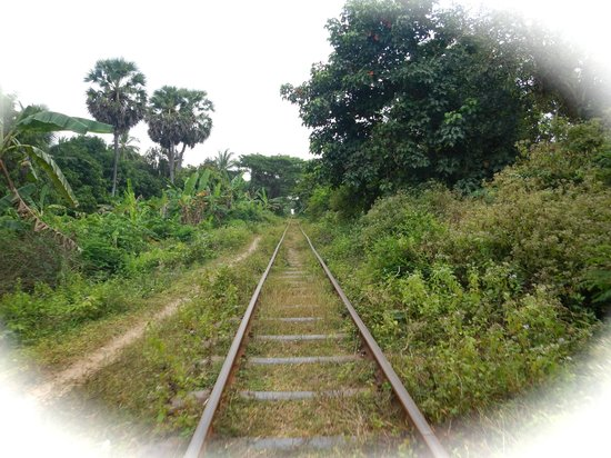 Bamboo Train: track goes all the way to Phnom Phen